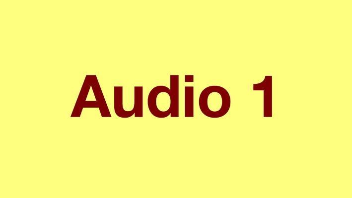 Adjectives   Pronunciation Audio