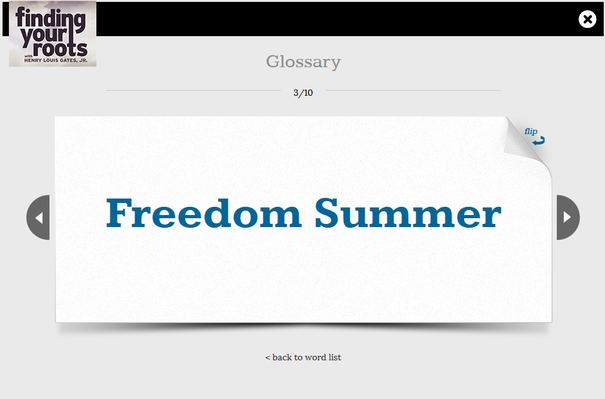 1964 Freedom Summer: Changing the Status Quo in the Civil Rights Movement Flashcards