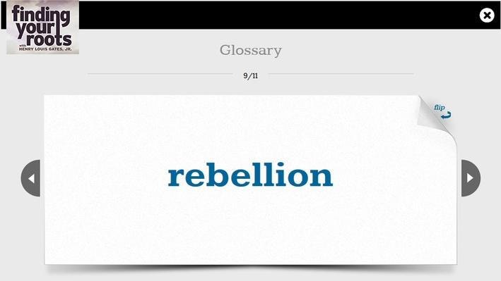 Bold Act of Rebellion Flashcards