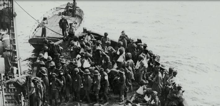 Mia Farrow's Ancestry and The Battle of Gallipoli in WWI: Lesson Plan   Finding Your Roots