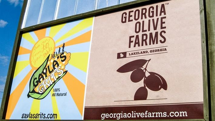 Fast Forward: Georgia Olive Farms