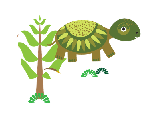 Animals of Australia - Tortoise | Clipart