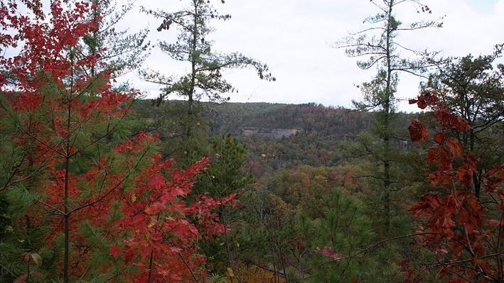 Red River Gorge | KET Image Bank
