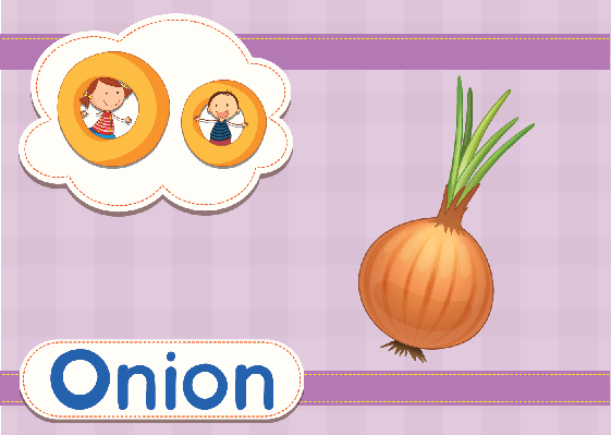 Vocabulary Cards - O for Onion | Clipart