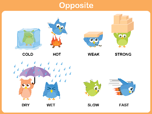 Word for Preschool: Opposite (#3) | Clipart