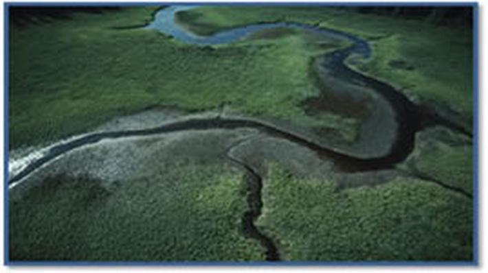Rivers | Science Trek