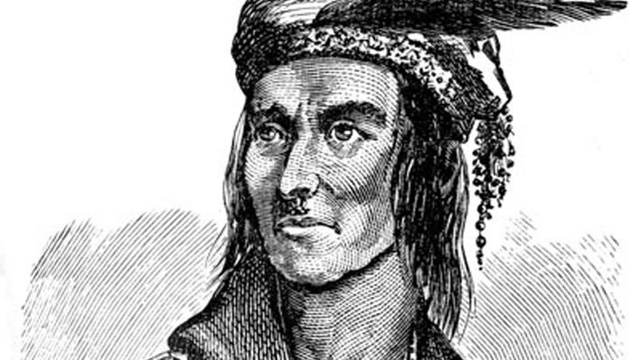 Shawnee Chief Tecumseh Portrait Image