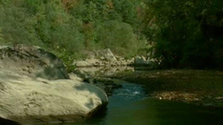 Water Solutions: Restoring Lower Rock Creek