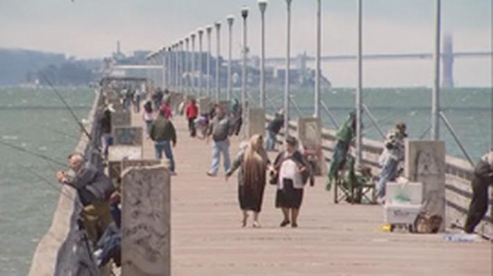 Mercury in San Francisco Bay | QUEST
