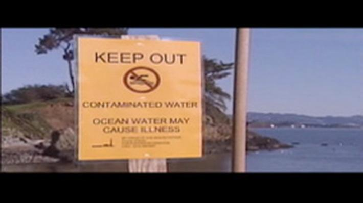 Wastewater Woes: Sewage Spills in SF Bay