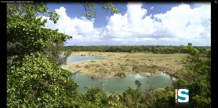 Aventura Científica: Laguna Tortuguero seg 1
