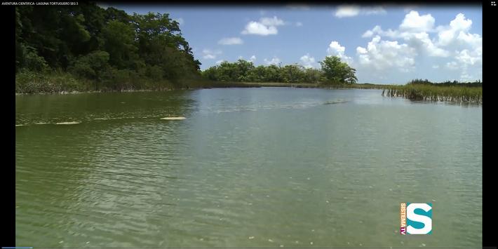 Aventura Científica: Laguna Tortuguero seg 3