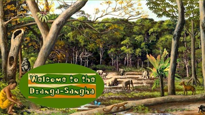Biodiversity in the Dzangha-Sangha Rain Forest