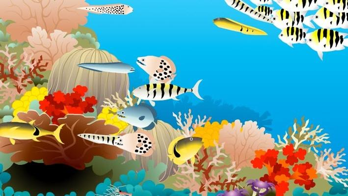 Build-a-Fish | Shedd Aquarium