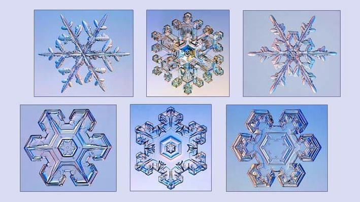 Snowflake Physics