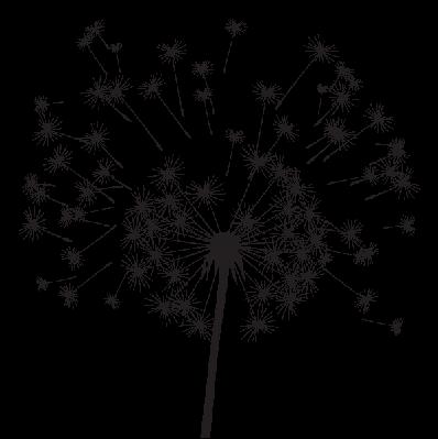 Dandelion | Clipart