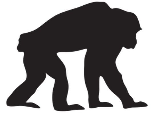 Animal Silhouettes - Chimpanzee | Clipart
