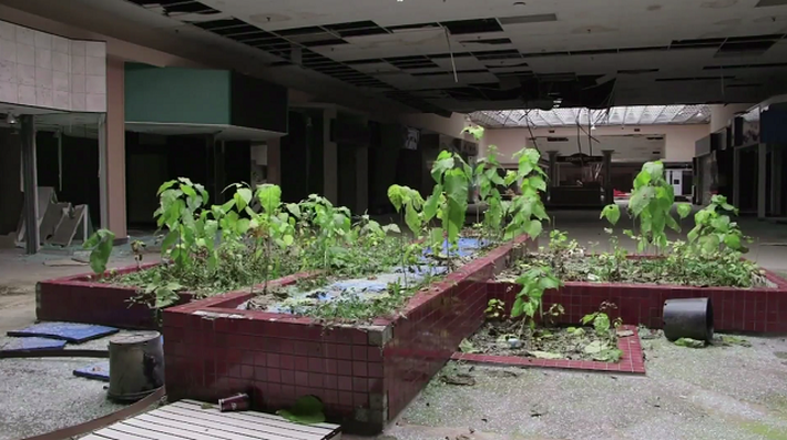 Why Malls Across America Are Dying - Video