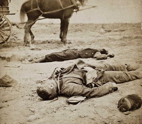 Contraband killed in battle alongside Union soldier