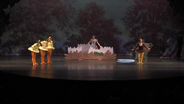 Sensory-Friendly Ballet Performance