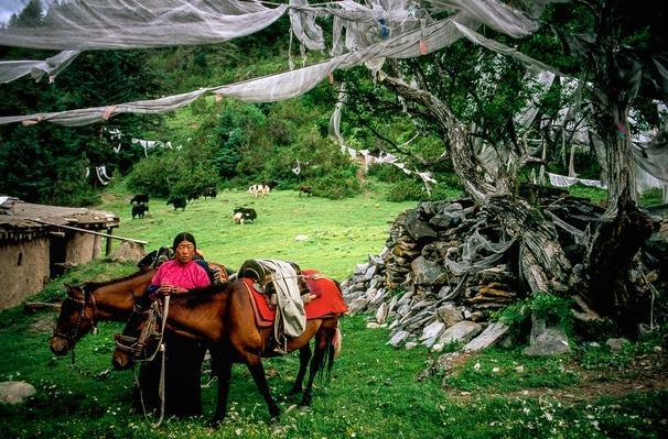 Pilgrimage Site in Eastern Tibet | Global Oneness Project