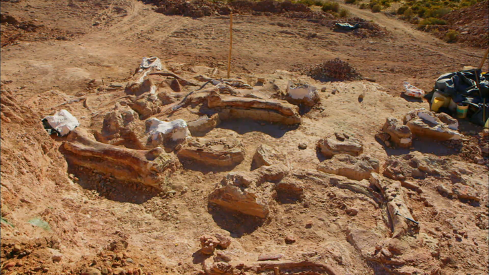 Examining the Evidence: How Did a Group of Dinosaurs Die?