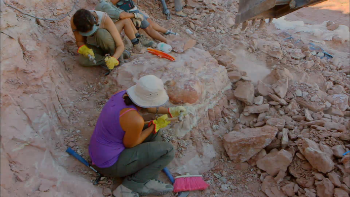Paleontologists at Work