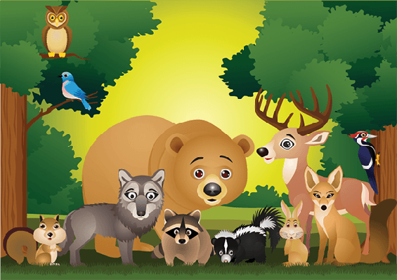 Wild Animal Cartoon | Clipart