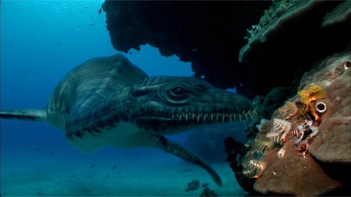 Nova australia 39 s first four billion years megafauna in for Georgia fishing license age