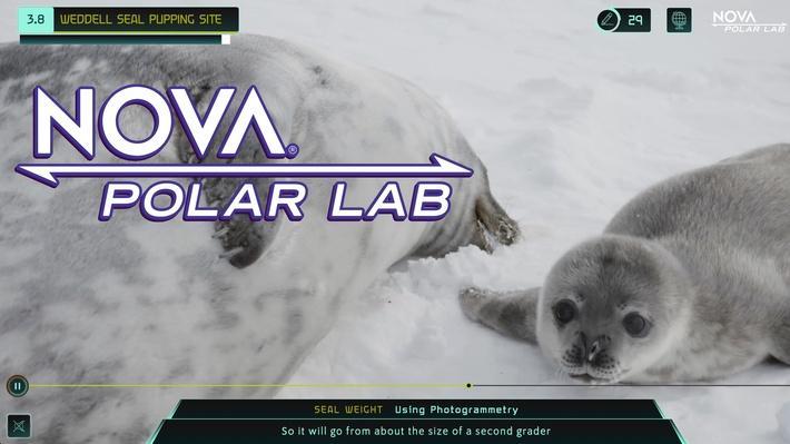 NOVA Polar Lab