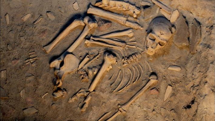 Investigating Neanderthals