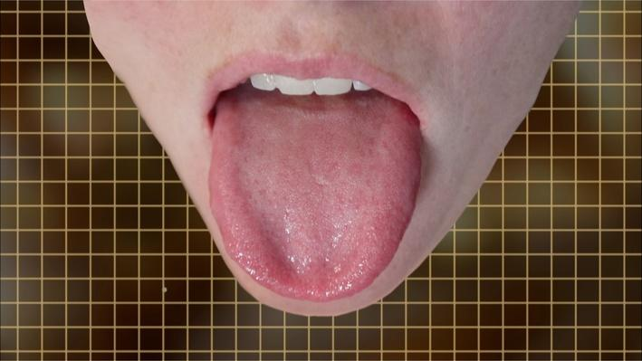 NOVA: Can I Eat That? | What Is a Supertaster?