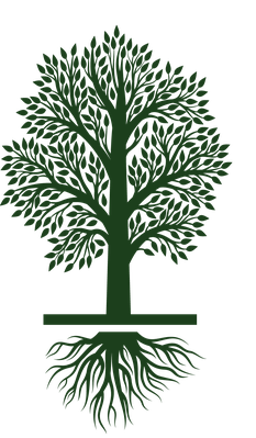 Tree Growing: Growth Life Cycle Icon Set | Clipart