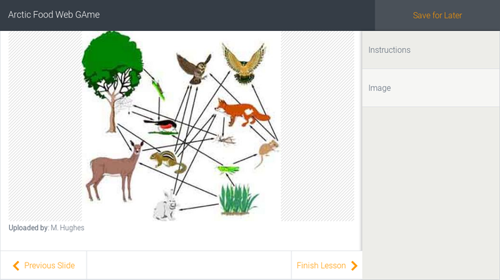 Arctic Food Web GAme