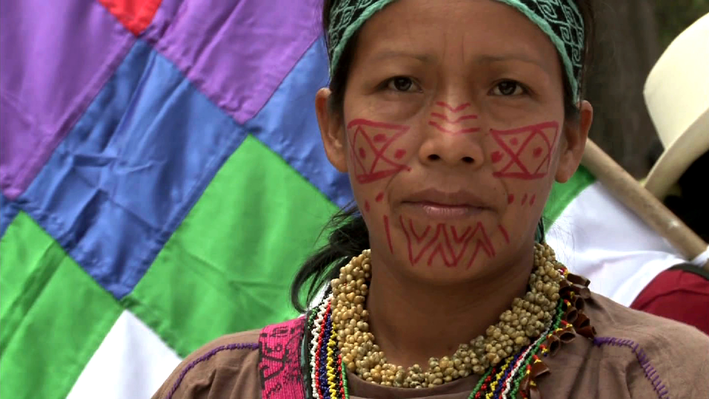 Peru's Indigenous People Demand Action on Environmental Threats - Video