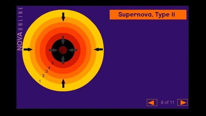 Birth of a Supernova: Type II