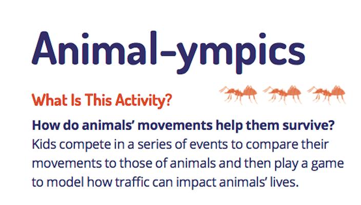 Animal-ympics