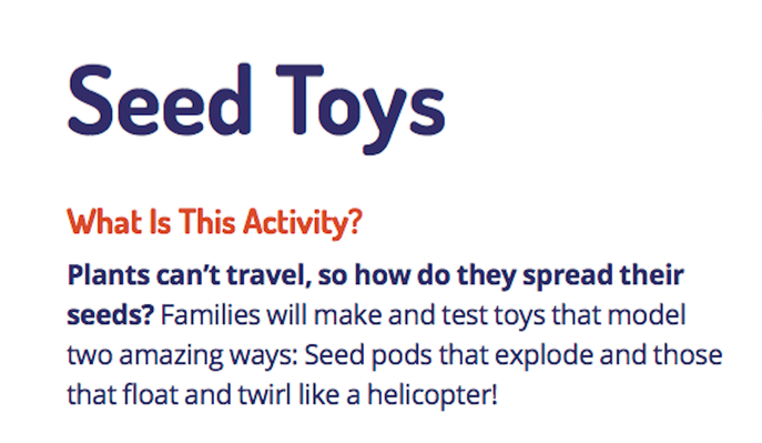Seed Toys