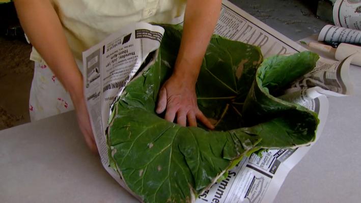 Sara Jo Trangsrud: Rhubarb Leaf Pottery | Prairie Mosaic Shorts