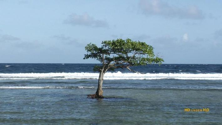Micronesia's Changing Climate | The Problem
