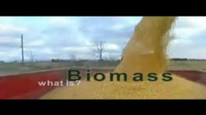 Pennsylvania Energy: Biomass
