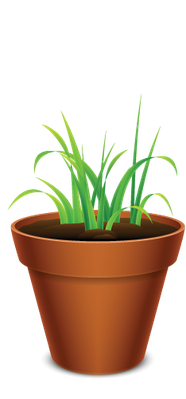 Growing Grass | Clipart