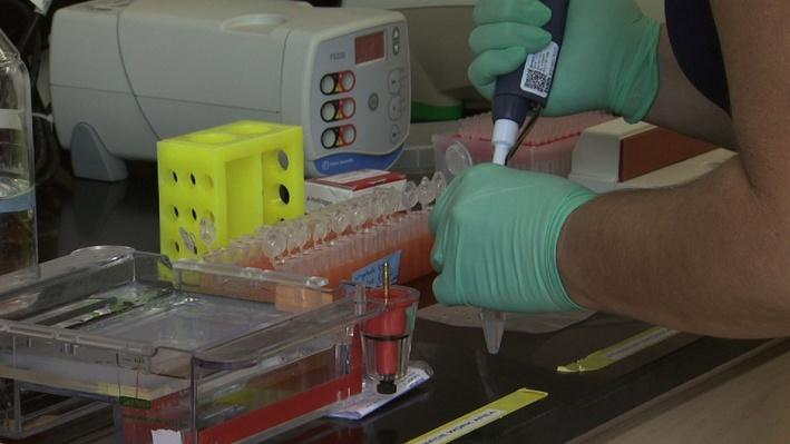 UNC-TV Science | Rapid Test for Bad Bacteria at the Beach