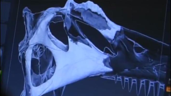 Recreating Spinosaurus