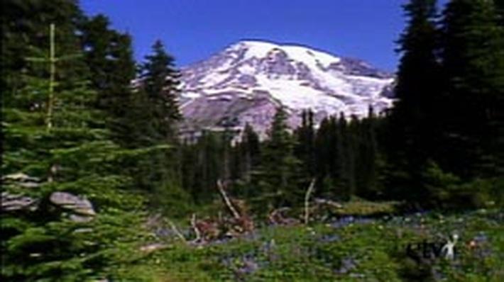 Nisqually Glacier at Mount Rainier | NatureScene
