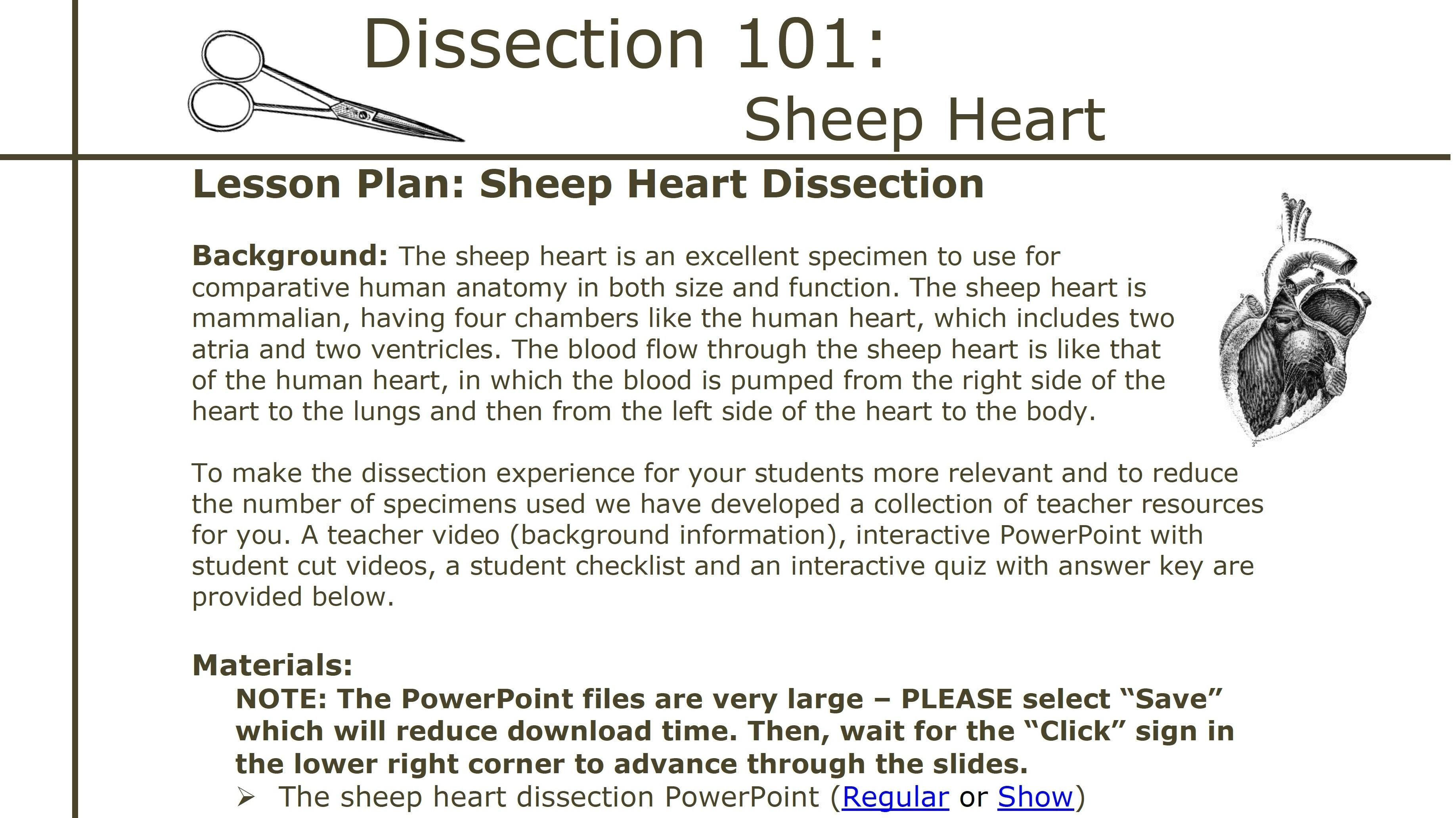 Dissection 101 Sheep Heart Dissection Lesson Plan Pbs Learningmedia