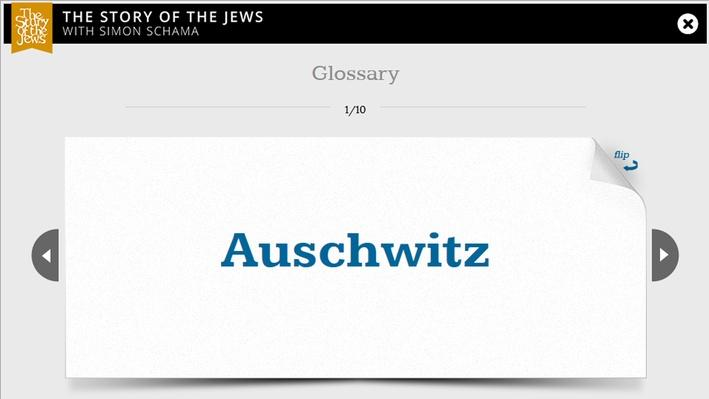 Holocaust in Plunge Flashcards