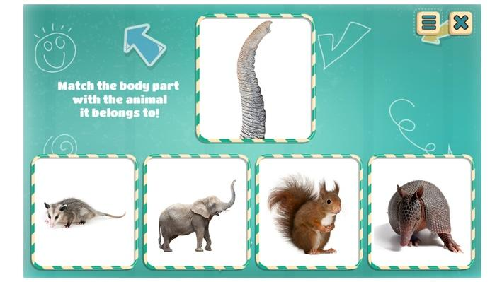 A Tail Like This | Interactive | Everyday Science