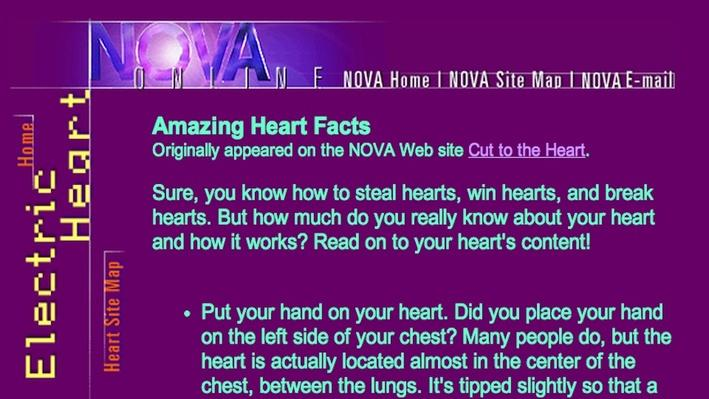 Amazing Heart Facts