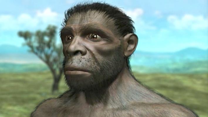 Evolving Ideas: Did Humans Evolve?